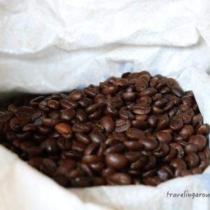 インド産コーヒー発祥の地!チクマガルール