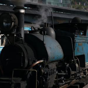 世界遺産!ダージリン・ヒマラヤ鉄道と紅茶の産地ダージリン