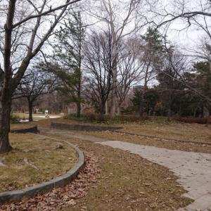 昼は無職、中島公園を散策。