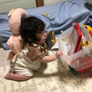 じぇりまる氏とおもちゃ箱。