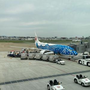 【移動制限解除!】日本トランスオーシャン航空NU53便 福岡~那覇搭乗記