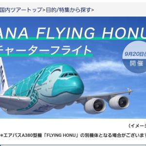 ANAフライングホヌ チャーターフライト(第2回) 概要・申し込みから当選まで・当日の様子など【ANA FLYING HONU】