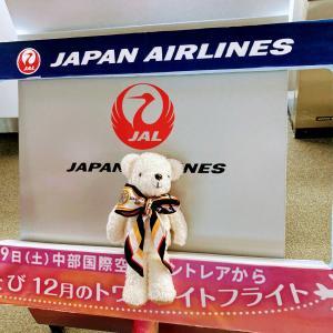 【遊覧飛行搭乗記】セントレア発着JAL周遊フライト「空たび トワイライトフライト」当選 概要・申し込みから当選まで・当日の様子