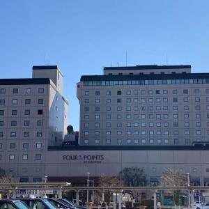 フォーポイントバイシェラトン函館宿泊記。ホテルの基本情報・アクセス・ルーム紹介。函館駅前でアクセス抜群。