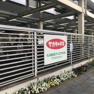 【神奈川の大型園芸店】サカタのタネ ガーデンセンター 横浜に行ってきました(2020年3月訪問)