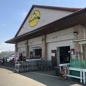 【神奈川の大型園芸店】グリーンファーム(GREEN FARM)戸塚深谷店に訪問