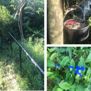 裏庭の雑草抜き取り・処分作業:夏の雑草の処理と『防虫香』による虫除け対策