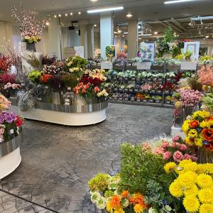 造花・フェイクグリーンで国内最大級!横浜ディスプレイミュージアムに行ってきました