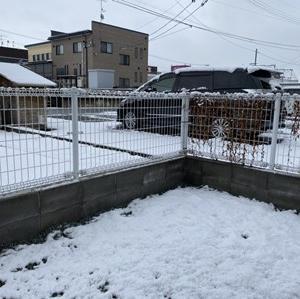 続・昨日の雪は夢か幻か