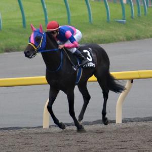 【メイショウ馬のレース回顧】7/11、12は馬券圏内1頭!