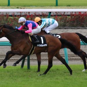 【今週のメイショウ馬の特別レース登録】オータムリーフSにメイショウギガースが登録