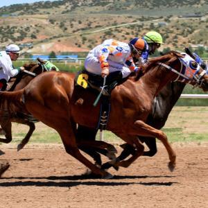 【実力馬が強さを見せた】ユニコーンS、函館スプリントSのレース回顧