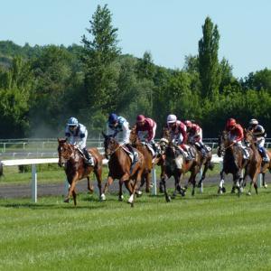 【札幌記念のデータ分析】人気、年齢、騎手など6項目から好走馬の傾向を探る