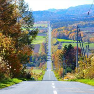 「ジェットコースターの路」はサイクリングが最高!【北海道】