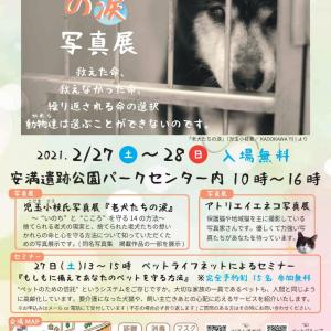 イベントのお知らせ(2/27~28)