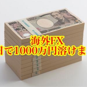 【海外FX】1000万円勝ちからの1000万円負けをやってみた件