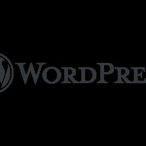 あるWordPressプラグインが生成していたファイルがサーバーに大量に蓄積していた