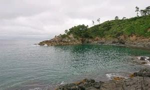 またまたまたまたまた田代島へ