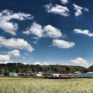 甲賀市に、近江鉄道みらいファクトリーが来たので、近江鉄道再建アイデアを考えてみた。