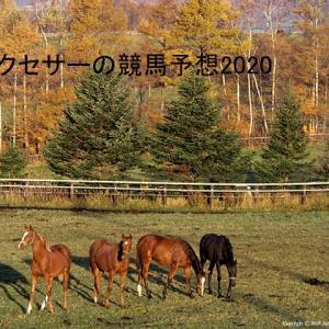【競馬2020】アメリカジョッキーCC&東海S【重賞予想】