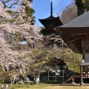 国宝 大法寺 三重塔・・・(小県郡青木村) ☆「見返りの塔」という名で親しまれています。