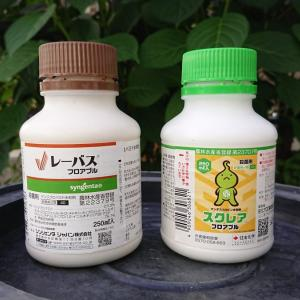【ぶどう消毒】 第7回散布・・・ ☆シャインマスカット (塩崎)に散布 7月5日