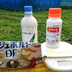 【ぶどう消毒】 第8回散布・・・ ☆袋掛け後、全品種に散布 7月11日