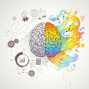 脳の使い方
