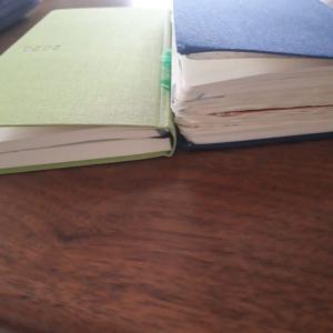 ほぼ日手帳weeksMEGA 今年の使い方は続くかも
