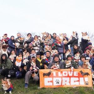 2020第6回『I LOVE CORGI ! オフ会』の写真を公開します!(o^▽^o)ノ
