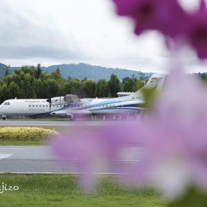 Samui International Airport 帰路