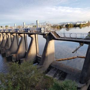堀川(黒川)の源流をたずねて、庄内川までさかのぼる