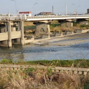 水を分ける橋・水分橋その西側にある水分橋緑地の春景色