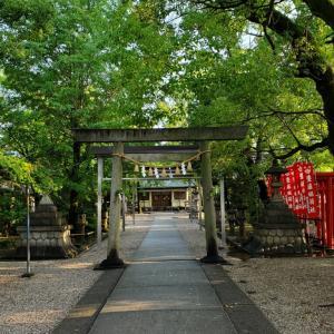 名古屋北部に点在する六所社、六柱の神を祀っているのか、6つの神社を合祀しているのか定かではない