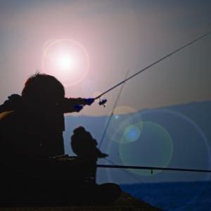 フカセ釣りの釣り方・手順を5ステップで説明するよ🎶