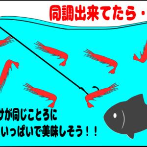 ウキを沈める⁉️フカセ釣り上級者へステップアップする方法😊✨