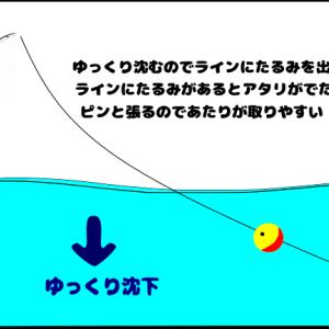このウキで釣れたよ😆‼️フカセ釣りで釣果が出たウキ3つを紹介😊✨