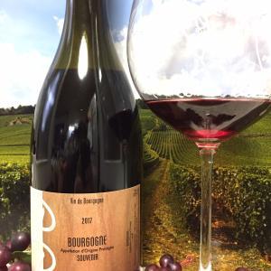 Petit-Roy Bourgogne Souvenir 2017