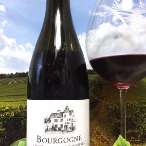Domaine Perrot-Minot Bourgogne Gravières des Chaponnières 2017