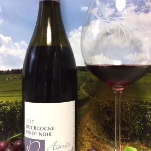 Domaine Agnès Paquet Bourgogne Pinot Noir 2017