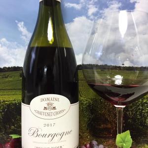 Domaine Chauvenet-Chopin Bourgogne Pinot Noir 2017