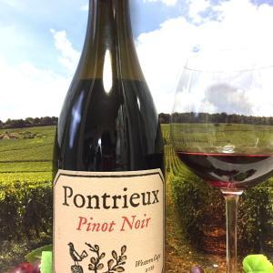 Pontrieux Pinot Noir 2019 Western Cape