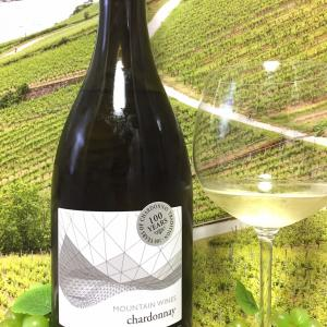 Almeida Garrett Mountain Wines Chardonnay 2018 DOC Beira Interior