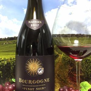 Domaine Michel Magnien Bourgogne Pinot Noir 2017