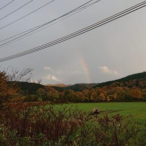 虹を撮影しました