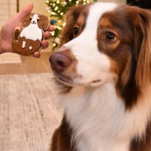 アイシングクッキーで愛犬を作ってみた なかなかの完成度に満足です