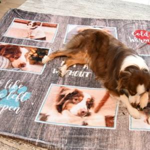 デリカシーのないサンタから素敵なプレゼントが またもや愛犬グッヅが1つ増えました