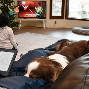 アメリカで暮らす子どもの日本語教育 アナログとテクノロジー両方を駆使しています