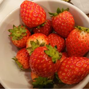 【雑記】スイパラで、イチゴを、食べつくすのだ!(中学生以上2,200円、4歳~1,770円)