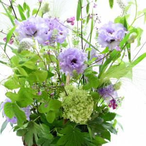 4連休のお花ごと | 花のある日常